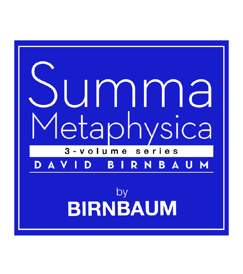 Guides On Summa Metaphysica By David Birnbaum